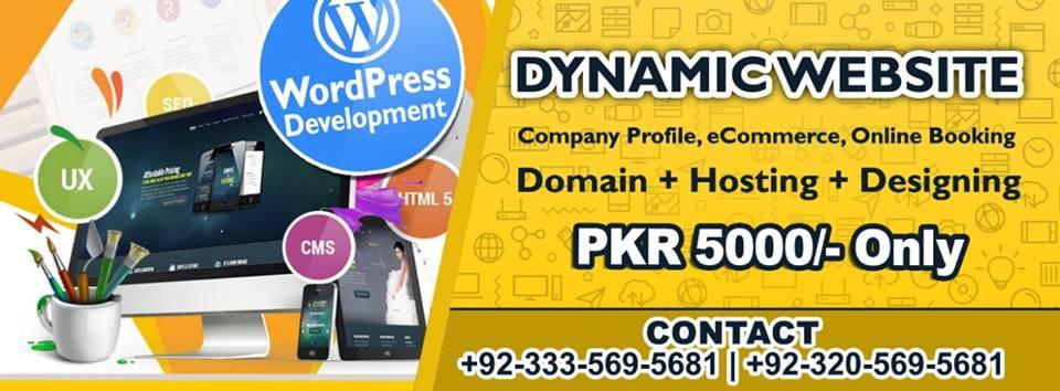 Website Developer in Pakistan Daain Communication +923335695681-min daain (4)
